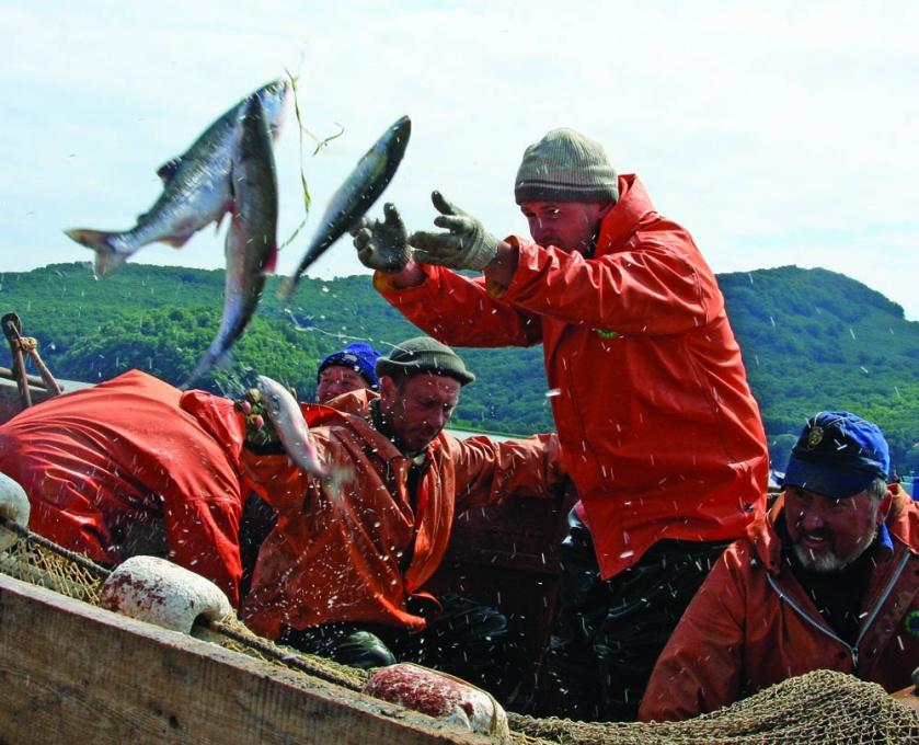 рыбаки петропавловска закрытая группа