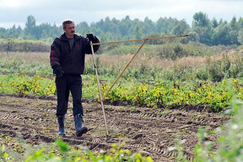 «Дальневосточный гектар» нужно поддерживать кредитами— Николай Харитонов